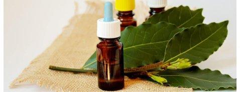 Tea Tree Oil: a cosa serve, usi, benefici e controindicazioni