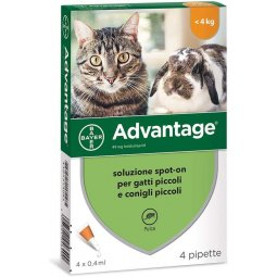 Advantage® Spot-On Solution For Cats And Rabbits Up To 4 Kg BAYER 4 Pipettes Of 0.4ml