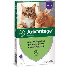 Advantage® Spot-On Solution For Cats And Rabbits Over 4 Kg BAYER 4 Pipettes Of 0,8ml