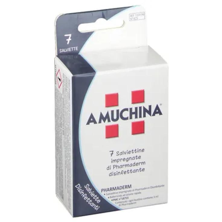 Amuchina Angelini 7 Disposable Wipes