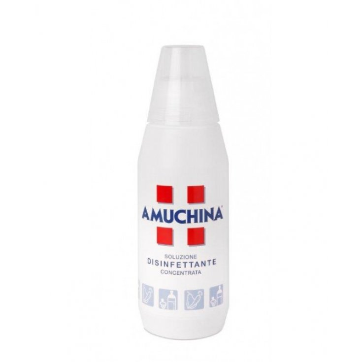 Amuchina Concentrated Solution Angelini 500ml