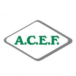 Activated Charcoal Ep Fine ACEF 100g