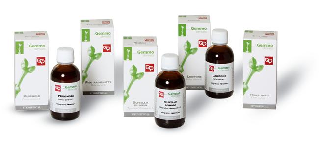 Ribes Nero Gemmoderivati Integraotre Alimentare 200ml