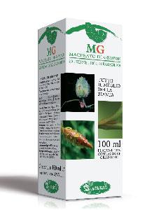 Sangalli MG Betulla Integratore Alimentare 100ml