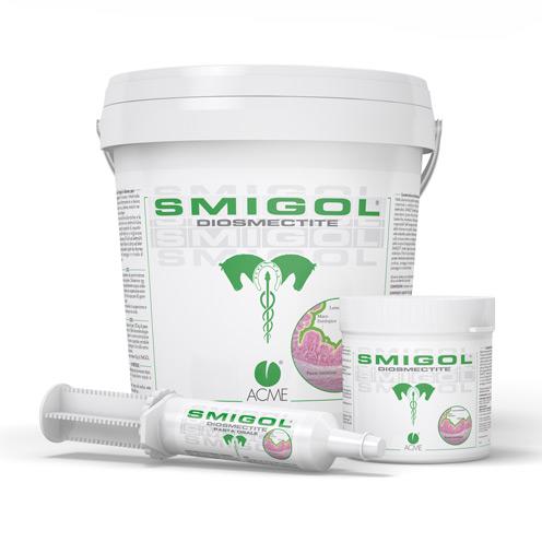 Image of Acme Smigol Pasta Polvere Prodotto Per Cavalli 100g+1 Siringa 904925017