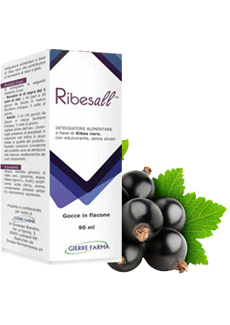 Image of Gierre Ribesall Integratore Alimentare 90ml 927180644