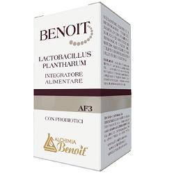 Image of Benoit Lactobacillus Plantharu 924295239