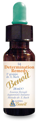 Image of Determination Remedy 28ml 926501103