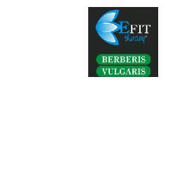 Image of Berberis Vulgaris Estr Fl 30ml 910245909