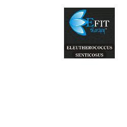 Image of Eleutherococcus Sen Est Fl30ml 910381755
